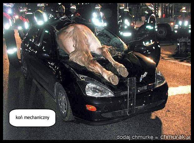 koń mechaniczny