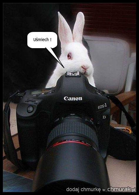 Włochaty fotograf