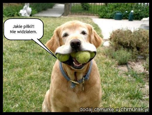 Ktoś ukradł nasze piłki!!