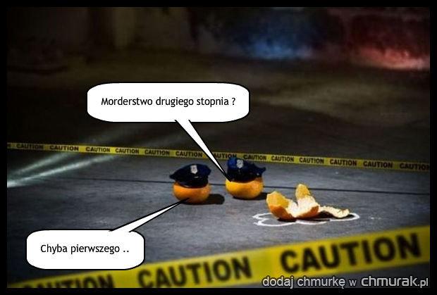 NCIS - kryminalne zagadki z warzywniaka