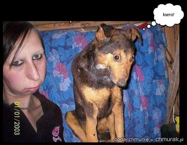 pies utożsamia się do właściciela