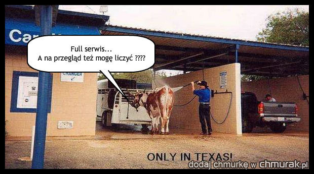 Tylko w Texasie