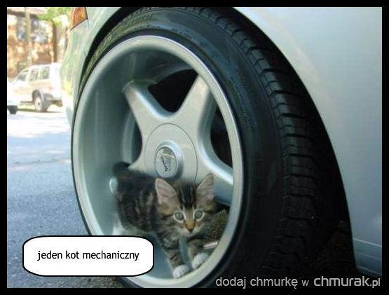 jeden kot mechaniczny