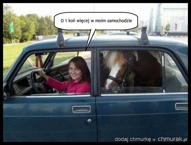 Koń zapasowy