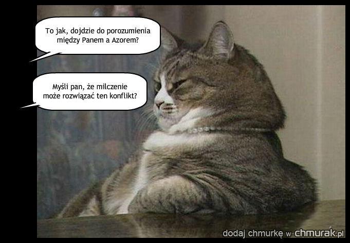 Wywiad z Wampirem? Nie, dziś tylko z wkurzonym kotem.