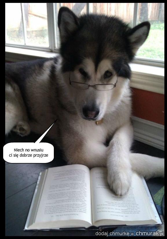Odwrócił wzrok od książki by powiedzieć...