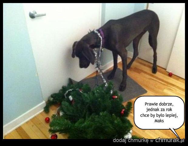 Święta i po świetach, czas rozebrać choinkę