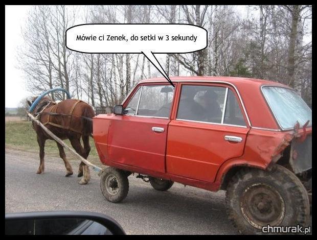 koń ciągnie śmieszny samochód