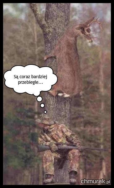 jeleń na drzewie i myśliwy