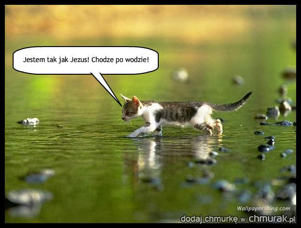 http://chmurak.pl/pictures/1771850_chodzenie-po-wodzie.jpg