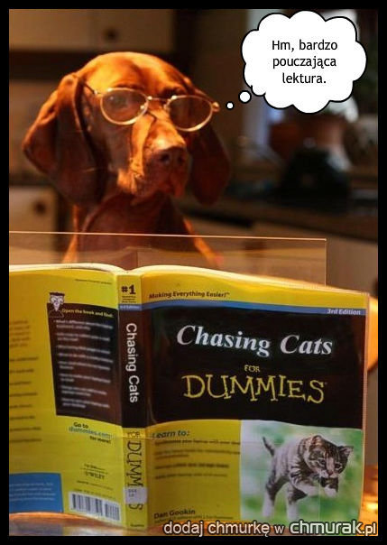 Pies-uczony