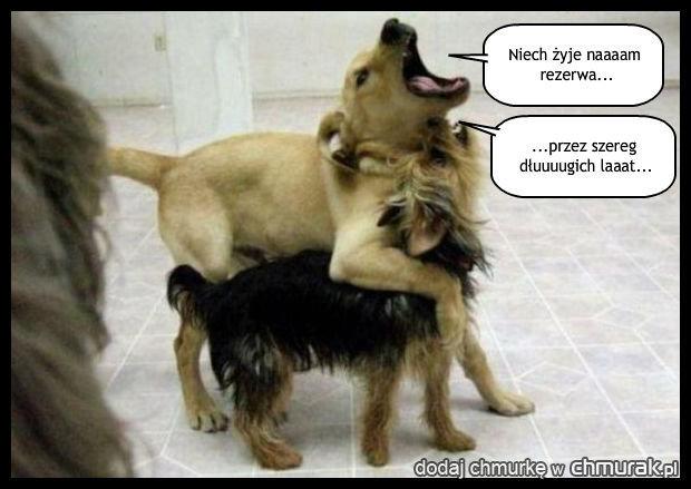 Psia rezerwa