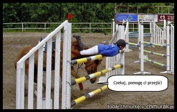 Pomocny koń