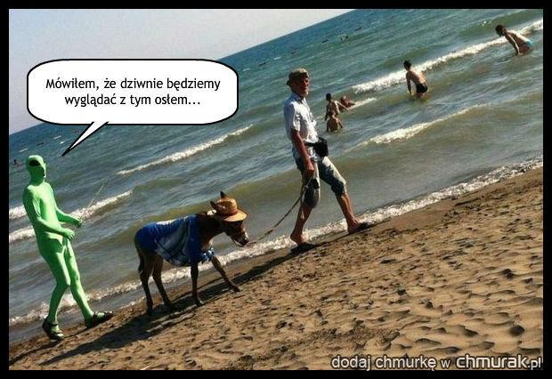 Ciekawi plażowicze
