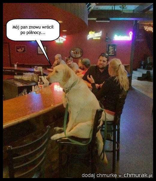 Jeszcze jedna miska wody, barman!