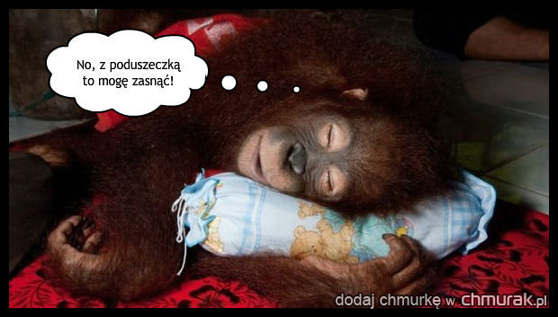 Dobranoc!