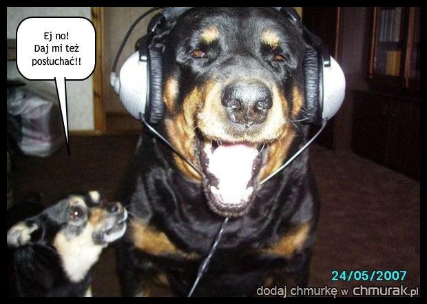 I tak go nie słyszy