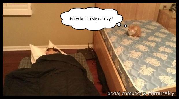Wywalczył łóżko