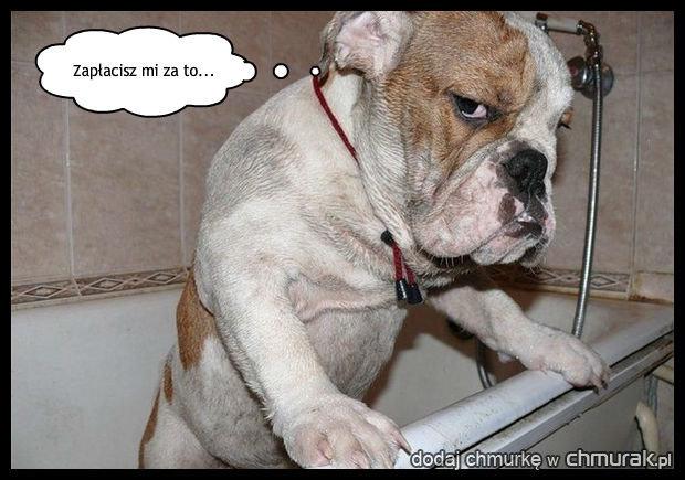 Chyba nie lubi kąpiel....