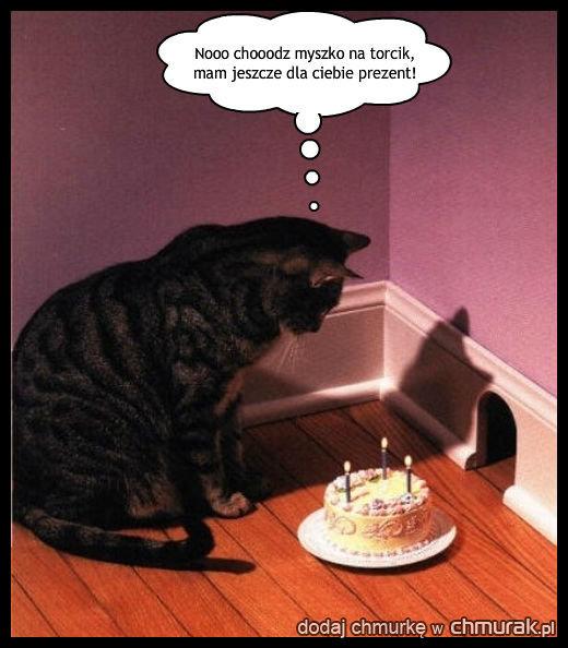 Ostatnie urodziny