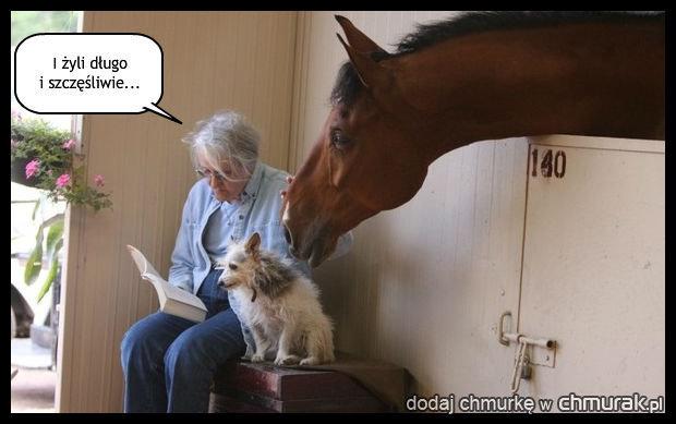 Zwierzęta też lubią bajki