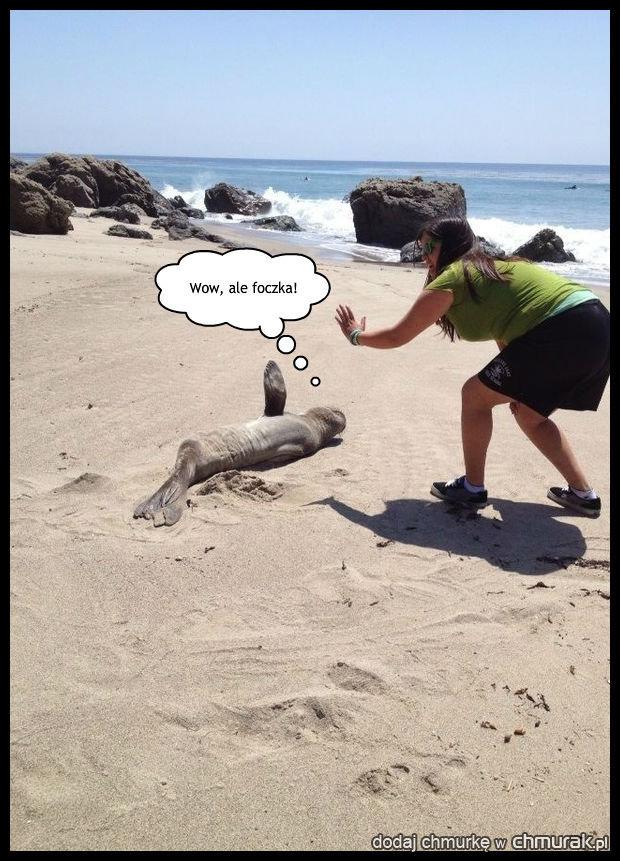 Podryw na plaży.