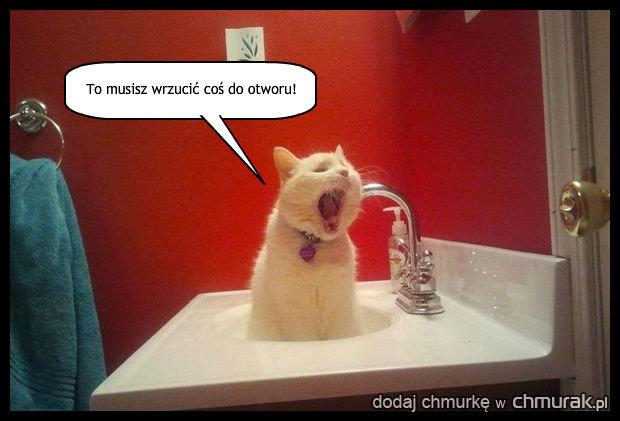 Chcesz umyć ręce?