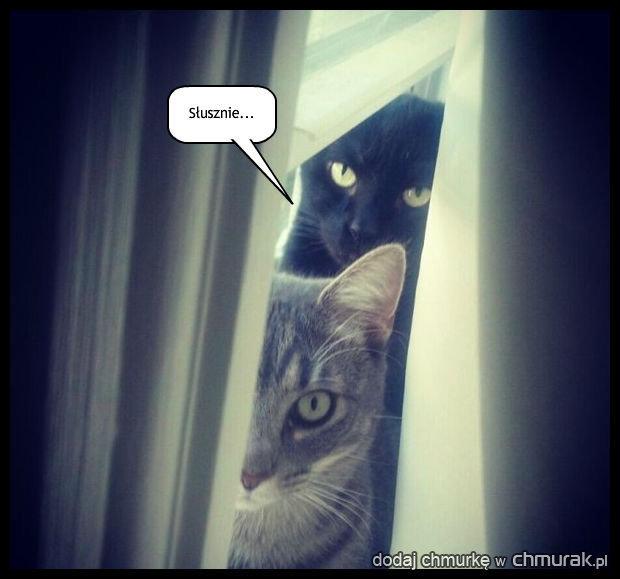 Czujesz się obserwowany?