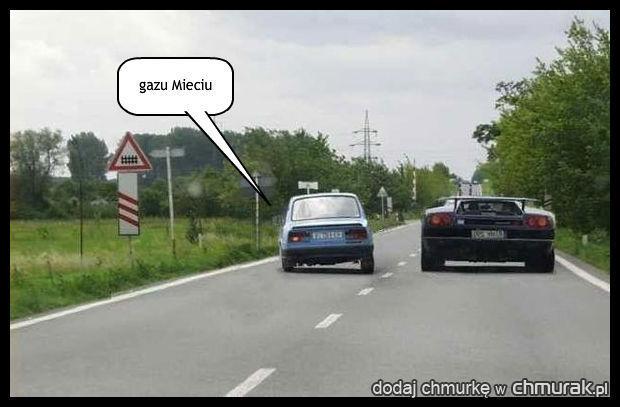 gazu Mieciu