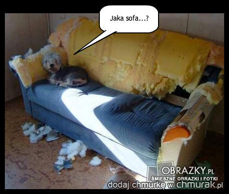 jaka sofa??