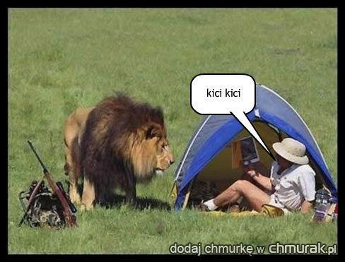 lew i myśliwy w namiocie