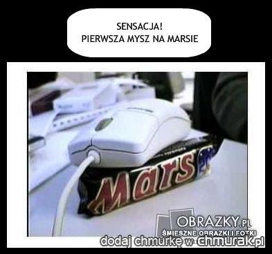 pierwsza mysz na Marsie :)