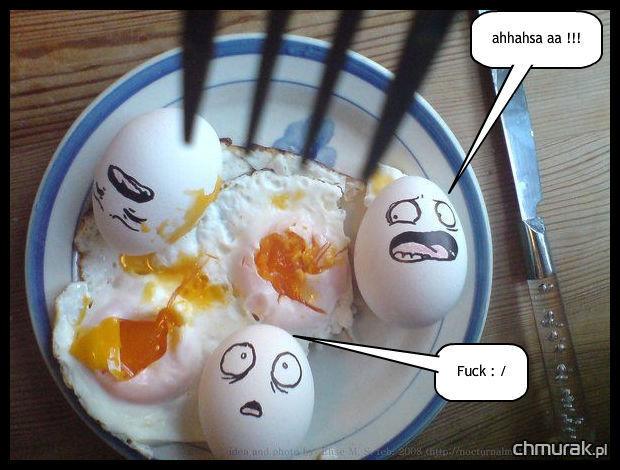 przestraszone jajka