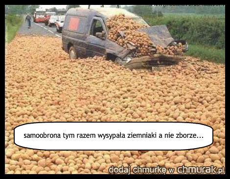 samoobrona tym razem wysypała ziemniaki a nie zborze...