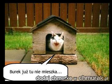 Burek już tu nie mieszka...